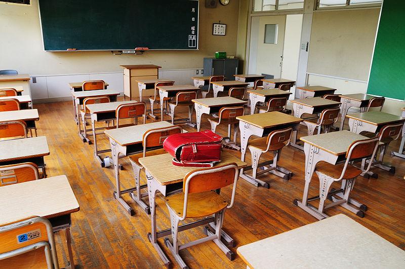 Школьная среда и культура - это особый мир.