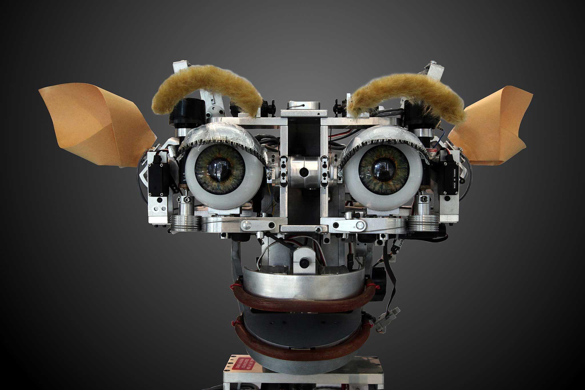 [Прелесть робототехники] Такая разная робототехника